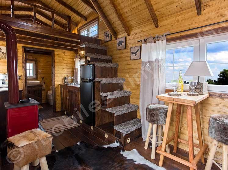 kaminofen-im-tiny-house_holzofen_747px